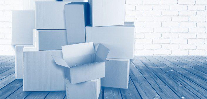 Mercancías paqueteras